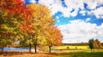 autumn_trees_colors_palette_bright_leaf_fall_52083_2560x1440