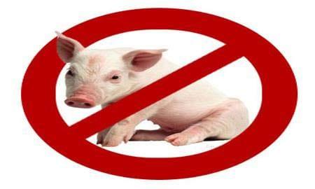 Лабораторията за изследване на африканска чума по свинете в областния град обработва месечно над 1000 проби