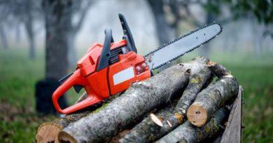 Незаконна сеч на дървесина, разкриха служители на полицейските управления във В. Търново и Стражица
