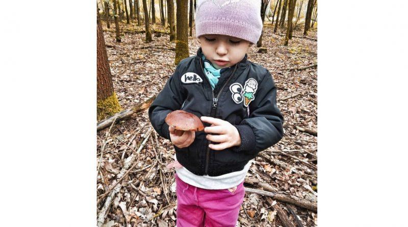 3-годишната Изабела Ботева е най-младата гъбарка в областта