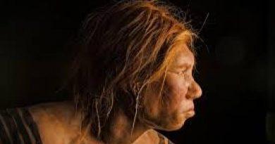 Неандерталците са погребвали мъртвите си с цветя