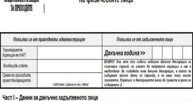 Над 6 500 души подадоха годишните си данъчни декларации в НАП В. Търново