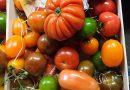 Затегнаха контрола над продажбата на пресни плодове и зеленчуци