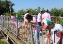 """Община Стражица и Местна комисия за борба с противообществените прояви на малолетните и непълнолетните организираха инициативата """"Мост на желанията"""""""