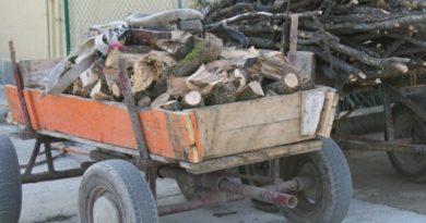 Еленските полицаи задържаха каруца с дърва в Майско