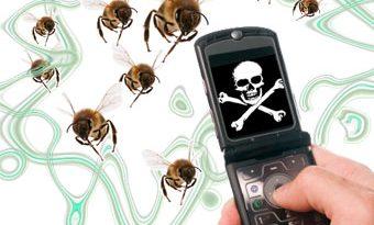 Мобилните телефони може да имат роля за смъртта на насекомите в Европа