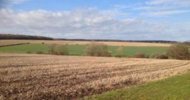 """От днес ДФ """"Земеделие"""" приема заявления по COVID 3"""
