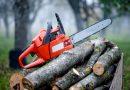 В Ореш откриха 5 кубика дърва от бракониерска сеч