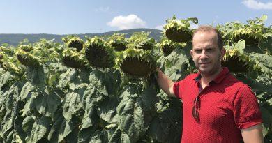 Земеделец, обработващ над 10 000 дка, влезе в депутатската битка във Великотърновско
