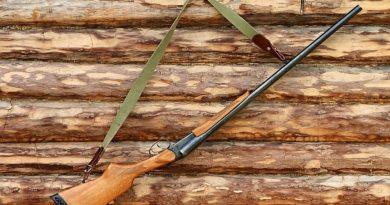 Дават премии на ловци за отстрел на лисици и чакали в Свищовско