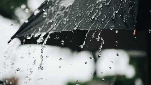151% от месечната норма за валежи са отчетени през юни във Велико Търново