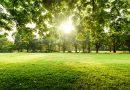 Рязката промяна в температурите е рисков фактор за хората с неврологични или психични заболявания