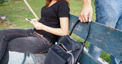 Серия кражби на дамски чанти и пари в областта