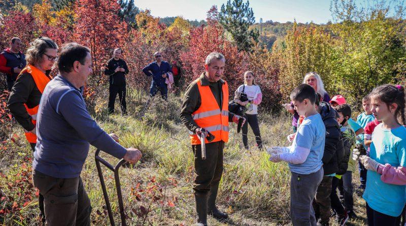 Малчугани се включиха в есенно залесяване на Горна Оряховица
