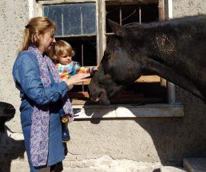 """Софиянче отпразнува рождения си ден с животните от фермата приют """"Приятели на четири крака"""" в Хотница"""