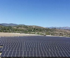 3,3 млн. евро искат за соларния парк край Самоводене